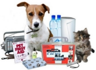 pet dog cat puppy first aid kit